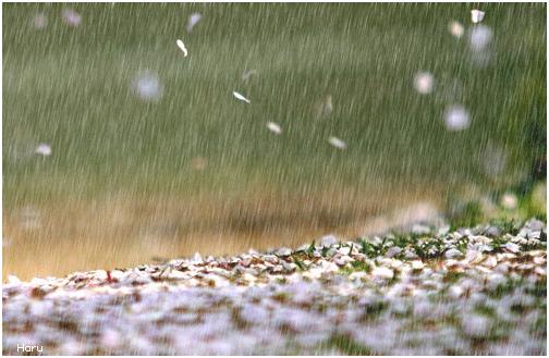 养生在梅雨季