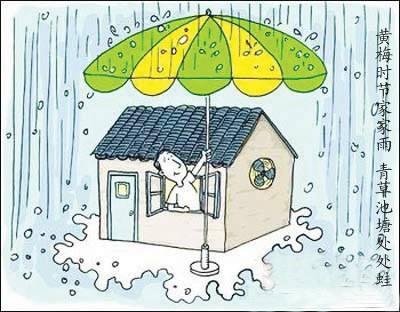 梅雨季必备小常识