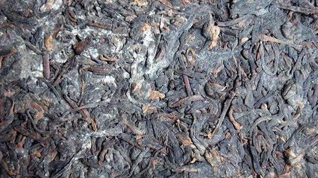 """茶叶的保存:""""发霉茶""""、""""金花""""、""""白霜""""如何区分"""