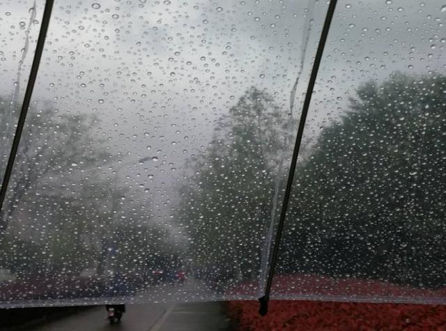 南方梅雨季很潮湿 一楼怎么防潮?