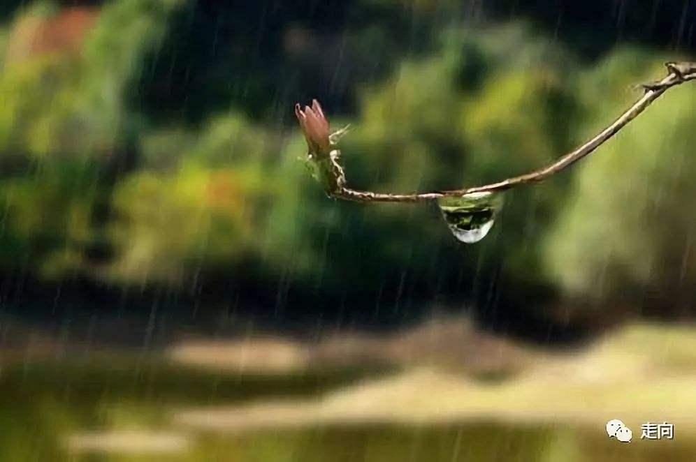 梅雨季除湿不能用空调