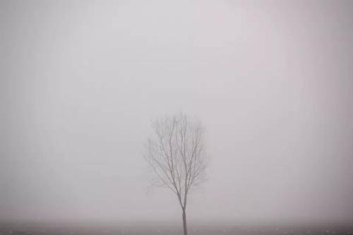 雾霾天,你怕了吗?