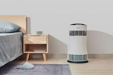 让宅家时空气更清新